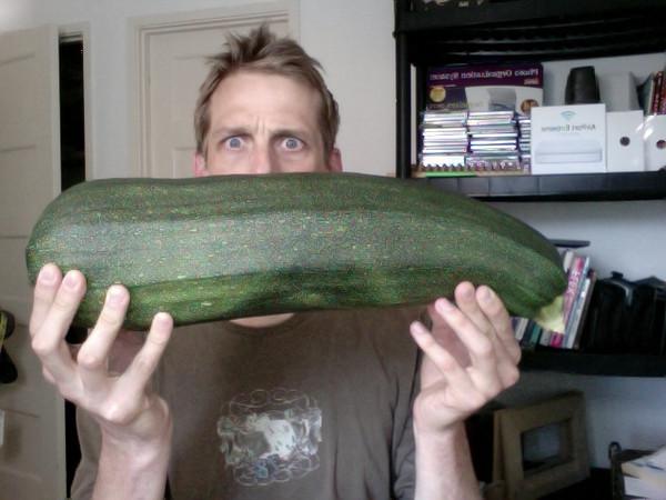 8.2 lbs of pure zucchini