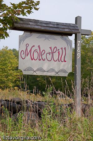 Mole Hill Theatre- E. Alstead, NH