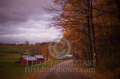 Jenne Farm near Reading Vermont