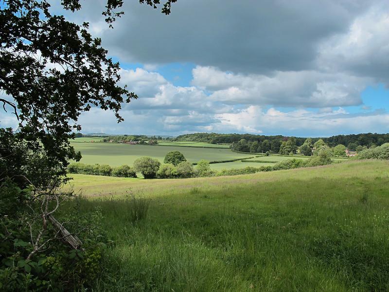 Overlooking fields at Edmonsham