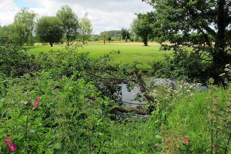Crane Valley golf course, near Verwood