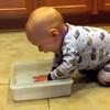 Patrick splashes in a bin of water.