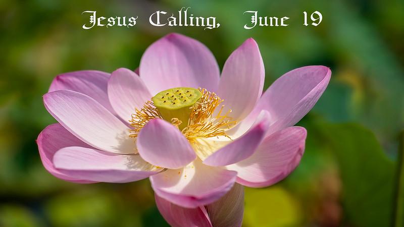 Jesus Calling, June 19