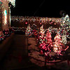 Spectacular Christmas display at a tiny house in west Denver!