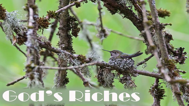 God's Riches