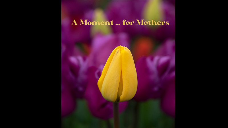 A Moment ... for Mothers