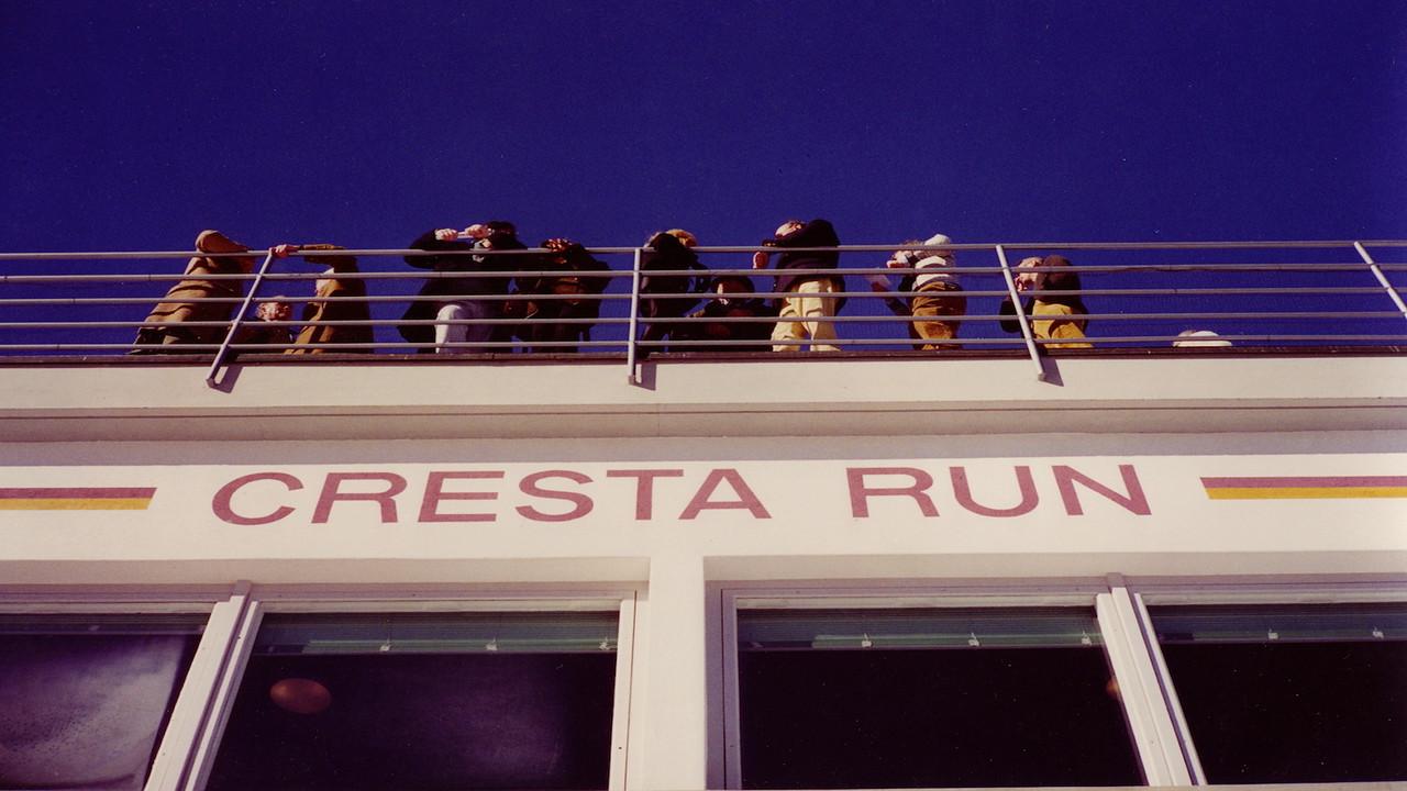 The Cresta Run