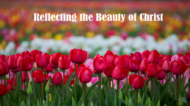 Reflecting the Beauty of Christ