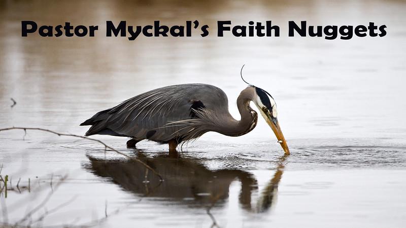 Faith Nuggets
