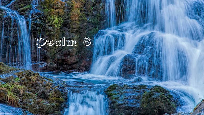 Psalm 8