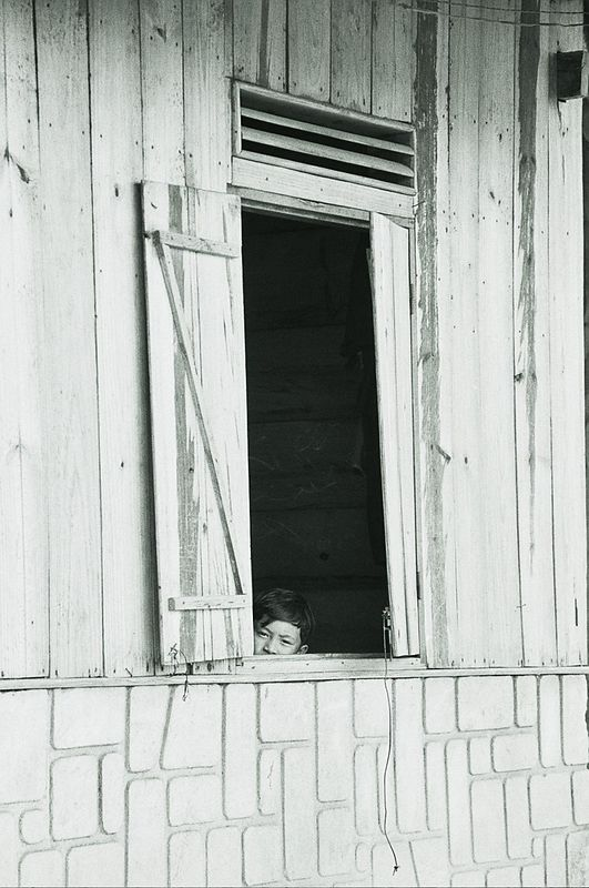 young boy at window