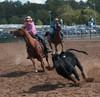 Virginia State Fair 2014-8592