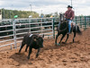 Virginia State Fair 2014-8578
