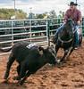 Virginia State Fair 2014-8579