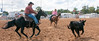 Virginia State Fair 2014-8586