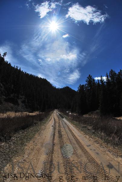 Mickelson Trail near Mystic