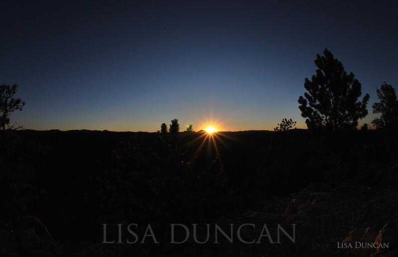 Buzzard's Sunset