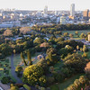 InterContinental Sydney view