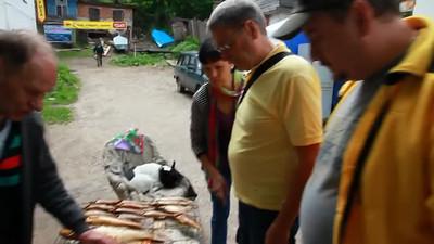 Рыбная лавка, покупка горячей копченой рыбы