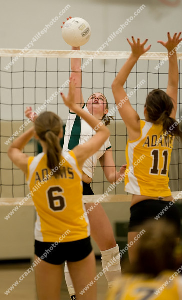 Adams vs. Groves<br /> 2008 Girl's High School Volleyball