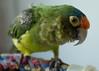 NJ trip animals 5-2014-4558-2