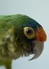 NJ trip animals 5-2014-4558