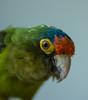 NJ trip animals 5-2014-4562