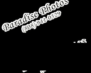 watermark light HIGH 941 0312