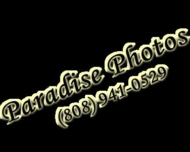 watermark kirsten  941 use this 1116