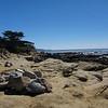 Monterey/Carmel