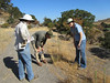 Linda, Ken, and Katrina check out...maybe a native grass?