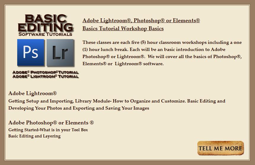 BANNER-Basic Editing