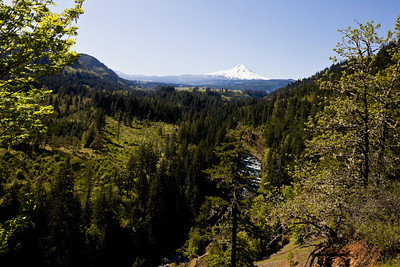 Scenic view of snow capped Mount Hood with forest in a foreground.