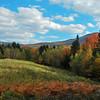 road view of Mt Moosilauke - 4802'