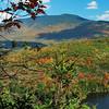 Mt Moosilauke - 4802', overlooking the pond