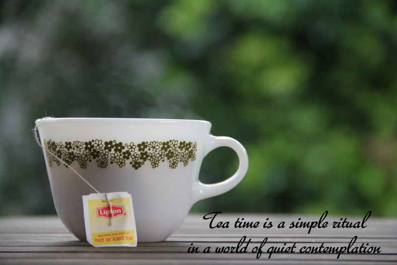 Tea time is a simple ritual in a world of quiet contemplation - Mike Quest