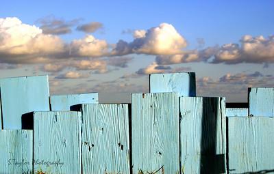 The Skyline