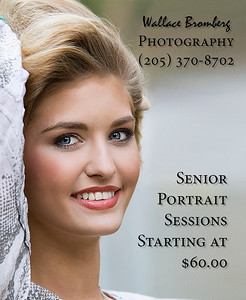 Wallace Bromberg Photography Ads