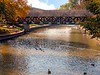 Riverwalk in Naperville Illinois
