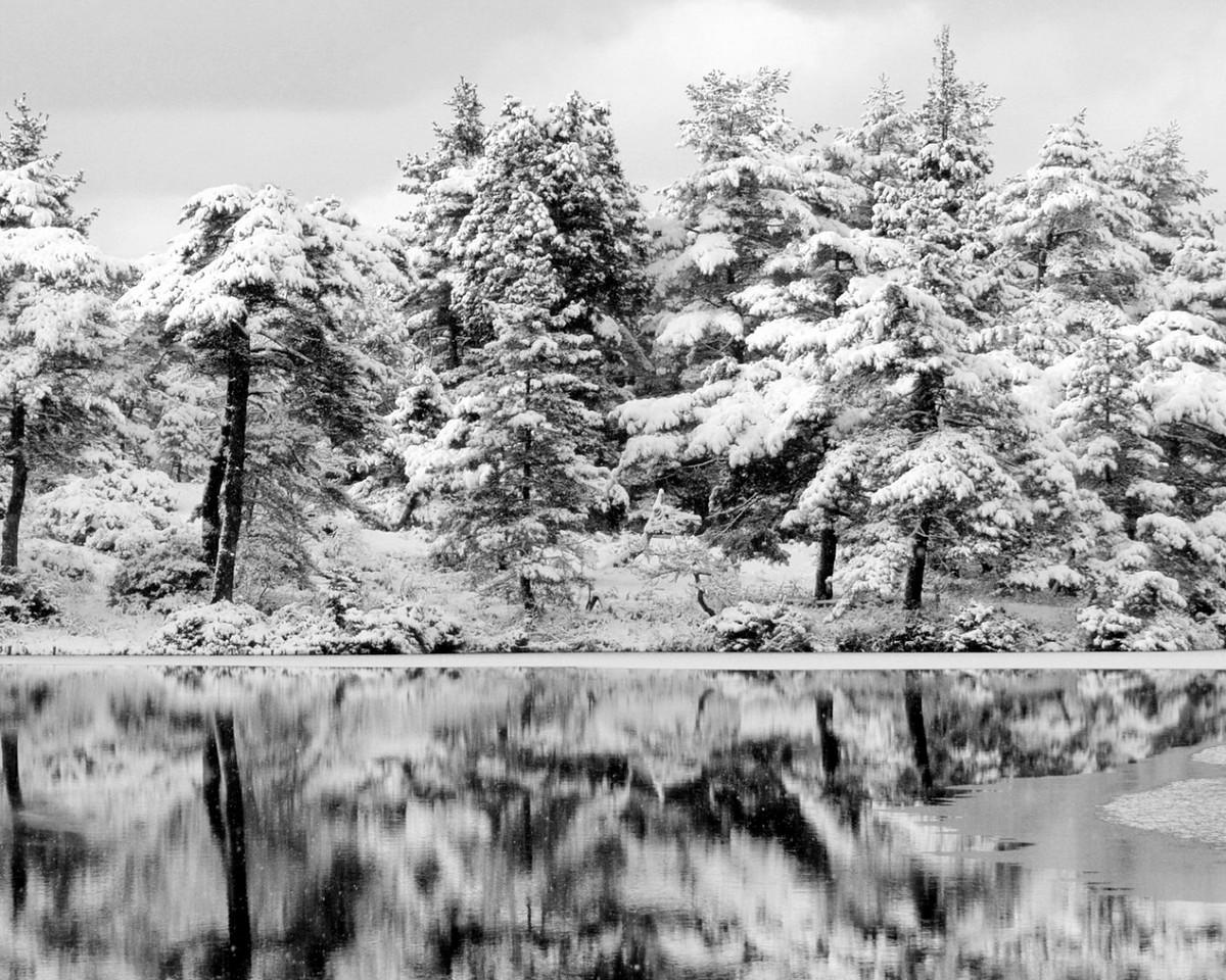winter 15 01