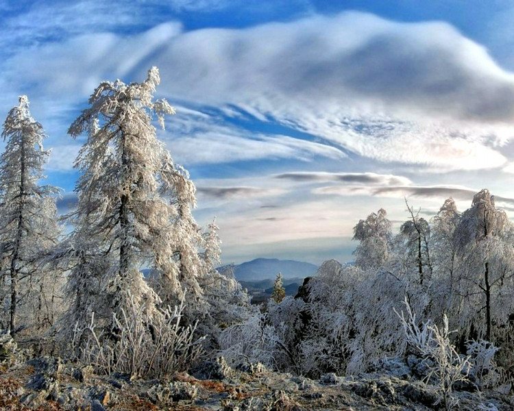 winter 10 01