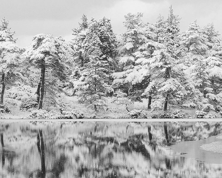 winter 15 01jpg
