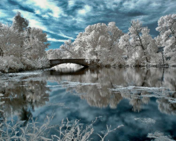 winter 08 diffuse