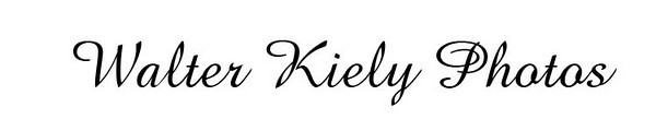 Walter Kiely Photos Banner Test png