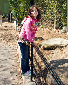 Washington DC Zoo Trips, 2011