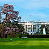 White House from Pennsylvania Avenue