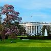 White House from Pennsylvania Avenue
