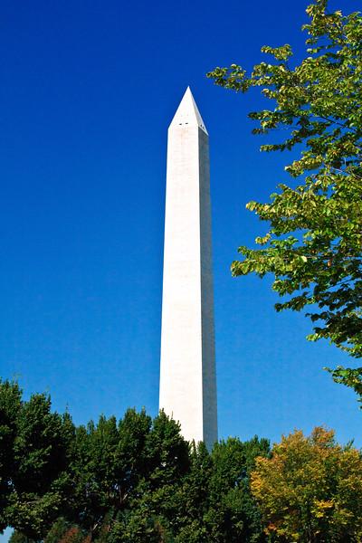 20111007 Washington  33544