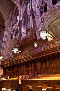 2011 Natl Cathedral-5419