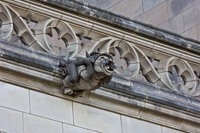 2011 Natl Cathedral-5391